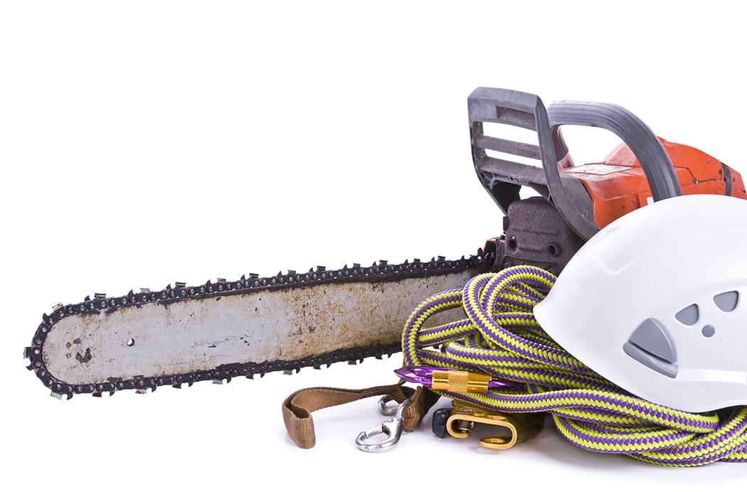 Tree surgeon tools including chainsaw, helmet, harness and rope.